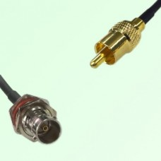 75ohm BNC Bulkhead Female to RCA Male Coax Cable Assembly