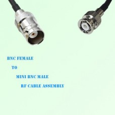 BNC Female to Mini BNC Male RF Cable Assembly