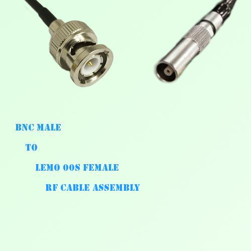 BNC Male to Lemo FFA 00S Female RF Cable Assembly