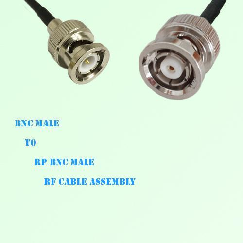 BNC Male to RP BNC Male RF Cable Assembly