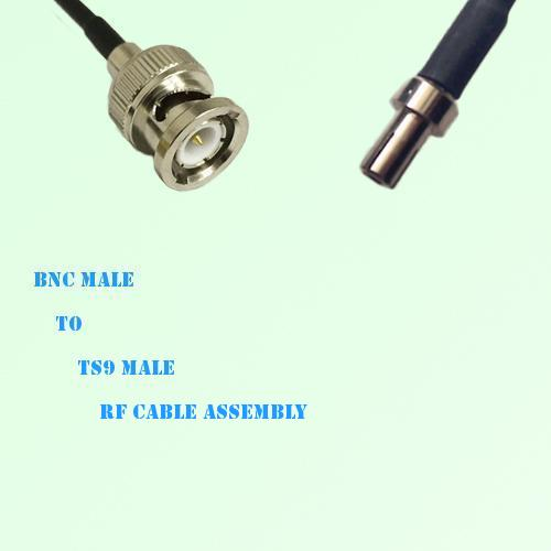 BNC Male to TS9 Male RF Cable Assembly