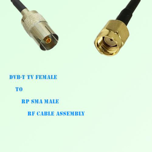 DVB-T TV Female to RP SMA Male RF Cable Assembly