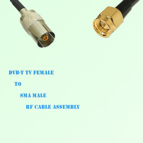 DVB-T TV Female to SMA Male RF Cable Assembly