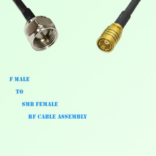 F Male to SMB Female RF Cable Assembly