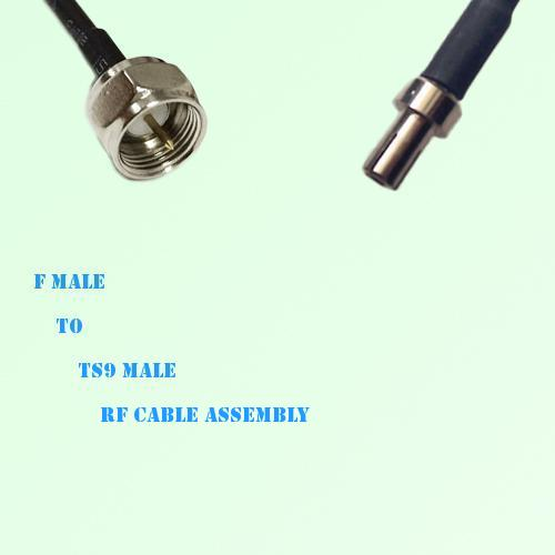 F Male to TS9 Male RF Cable Assembly
