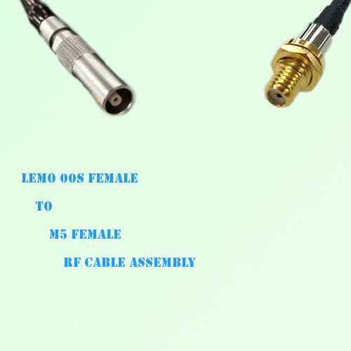 Lemo FFA 00S Female to Microdot 10-32 M5 Female RF Cable Assembly