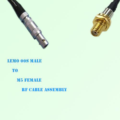 Lemo FFA 00S Male to Microdot 10-32 M5 Female RF Cable Assembly