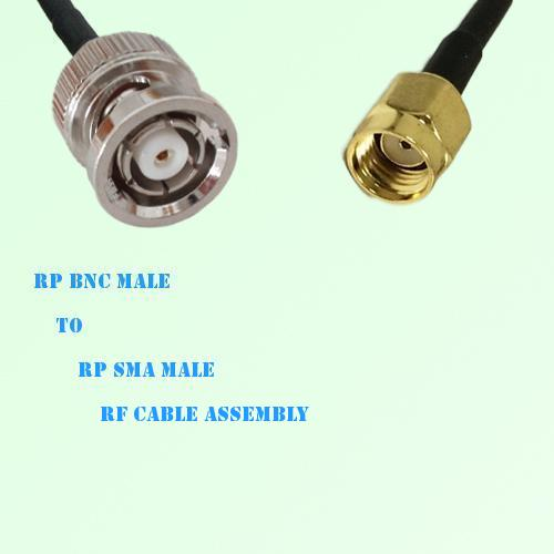 RP BNC Male to RP SMA Male RF Cable Assembly