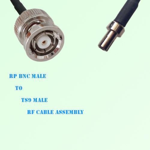 RP BNC Male to TS9 Male RF Cable Assembly