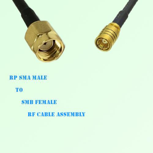 RP SMA Male to SMB Female RF Cable Assembly
