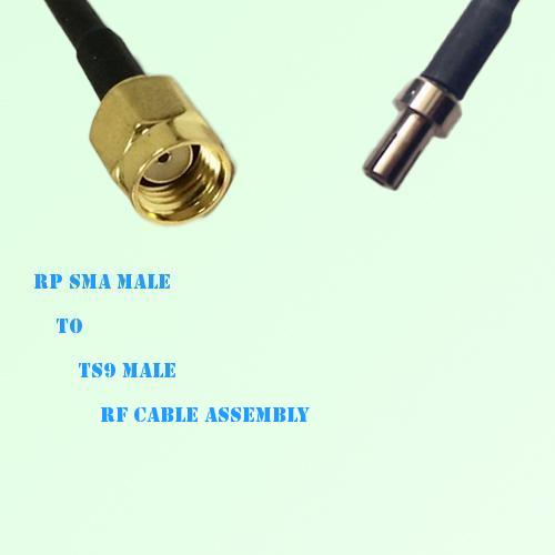 RP SMA Male to TS9 Male RF Cable Assembly