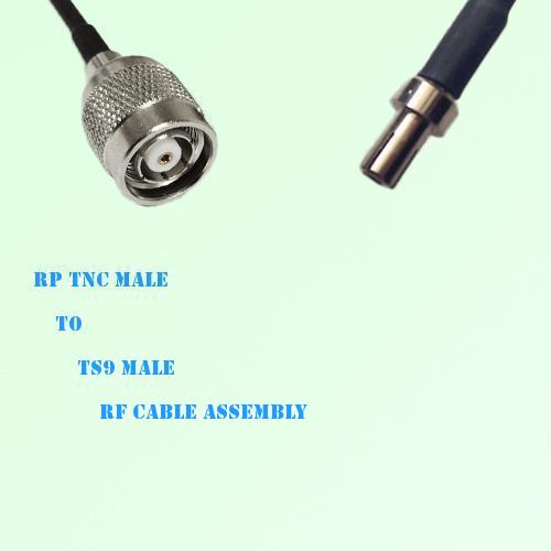 RP TNC Male to TS9 Male RF Cable Assembly