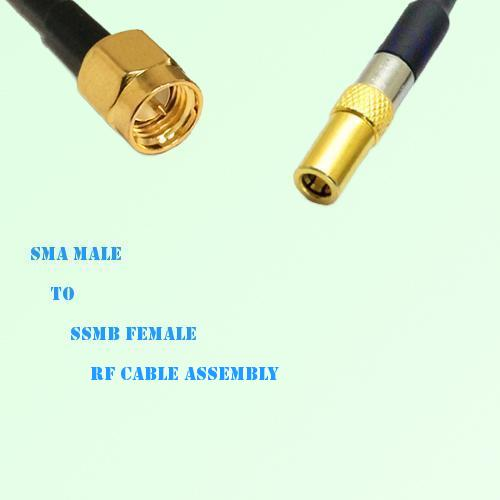 SMA Male to SSMB Female RF Cable Assembly