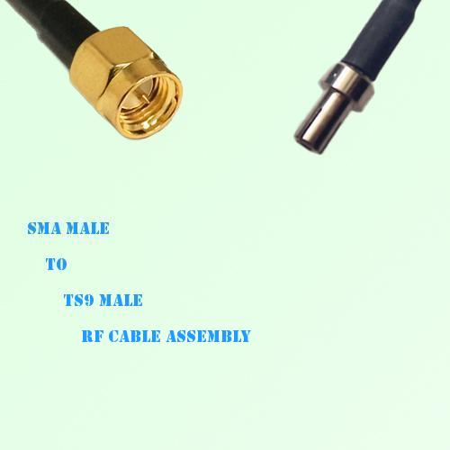 SMA Male to TS9 Male RF Cable Assembly