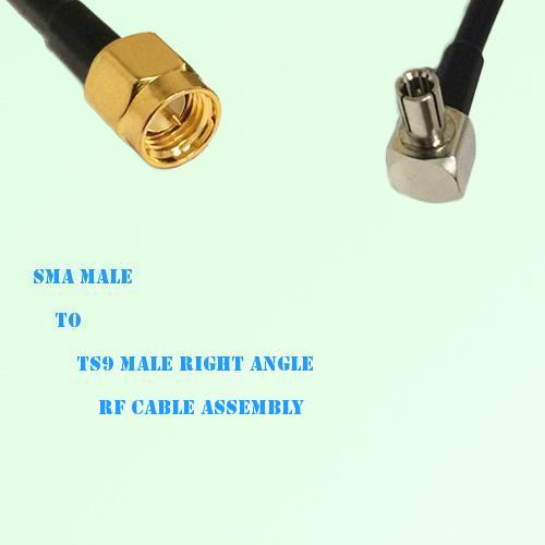 SMA Male to TS9 Male Right Angle RF Cable Assembly