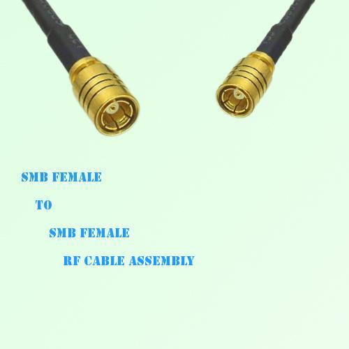SMB Female to SMB Female RF Cable Assembly
