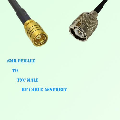 SMB Female to TNC Male RF Cable Assembly