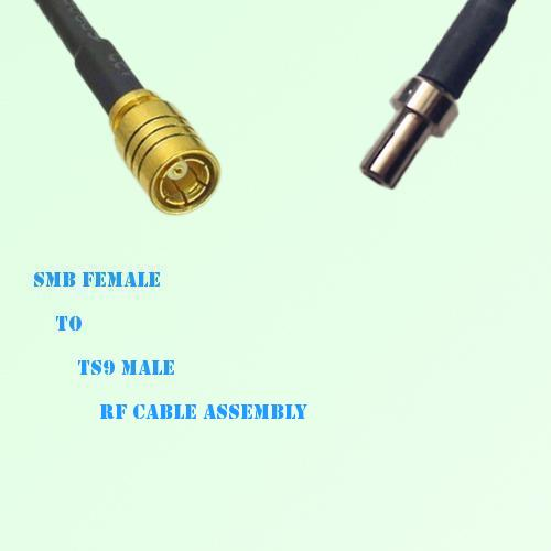 SMB Female to TS9 Male RF Cable Assembly