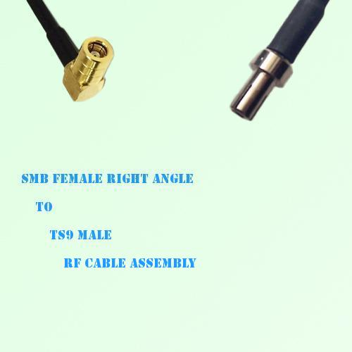 SMB Female Right Angle to TS9 Male RF Cable Assembly