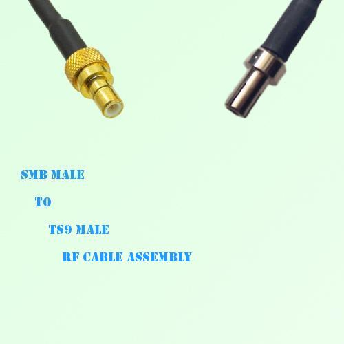 SMB Male to TS9 Male RF Cable Assembly