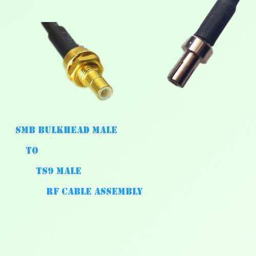 SMB Bulkhead Male to TS9 Male RF Cable Assembly