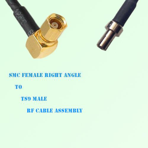 SMC Female Right Angle to TS9 Male RF Cable Assembly
