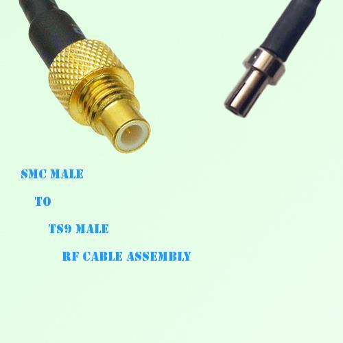 SMC Male to TS9 Male RF Cable Assembly