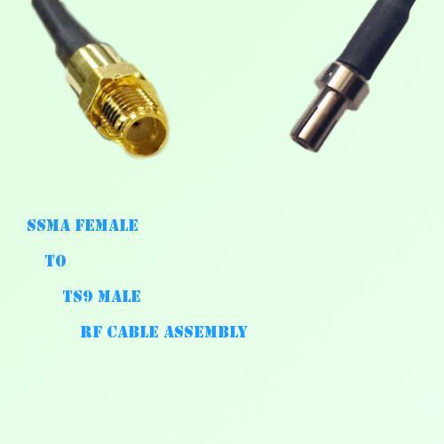 SSMA Female to TS9 Male RF Cable Assembly