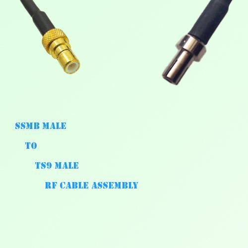 SSMB Male to TS9 Male RF Cable Assembly