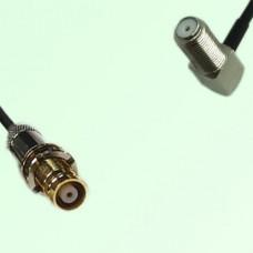 75ohm 1.6/5.6 DIN Female to F Bulkhead Female R/A Coax Cable Assembly