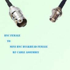 BNC Female to Mini BNC Bulkhead Female RF Cable Assembly