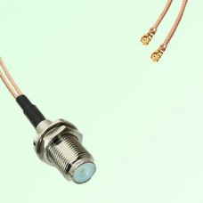Splitter Y Type Cable F Bulkhead Female to IPEX Default