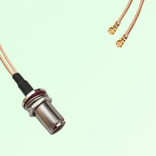 Splitter Y Type Cable N Bulkhead Female to IPEX Default